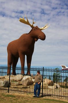 Mac the Moose, in Moose Jaw Saskatchewan Canada. This would make a cute art project to talk about scale. Students can draw themselves visiting roadside attractions in saskatchewan All About Canada, Saskatchewan Canada, Future Photos, Canada Eh, Roadside Attractions, Take Better Photos, Largest Countries, Cool Landscapes, Canada Travel