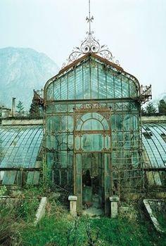 Forgotten Green House