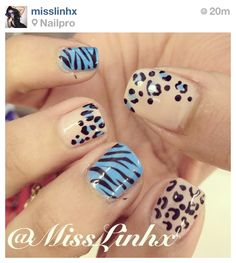 Blue and nude zebra nails, cheetah nails, leopard nails