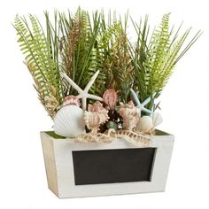 One of my favorite discoveries at ChristmasTreeShops.com: Ocean Theme Potted Plant with Chalkboard