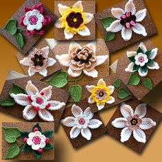 Crochet Flowers Pattern free PDF pattern by Julie Price - well, it's 10 dollars, not as free as stated by the original pinner :D