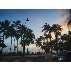 【xialai】さんのInstagramをピンしています。 《今日は金曜日だ( ˊᵕˋ ) 今週ラストがんばろう! どこ撮っても絵になるとはこーゆーこと😂💕パームツリーにキュン! ・ ・ #ハワイ #ホノルル #カラカウア通り #マジックアワー #夕暮れ #サンセット #表情変わる #空 #海#海を感じる #癒し #ハワイ大好き #ハワイ滞在記 #旅 #旅行 #フォローミー #パームツリー #hawaii #honolulu #karakaua #sunset #magichour #hawaiilover #instagood #instatravel #vacation #travel #f4 #followme》