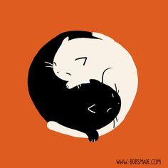 Cat Yin Yang by Bobsmade on deviantART