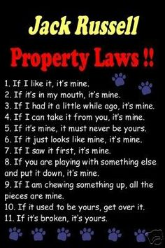 Only those who are owned by a JRT will understand:)