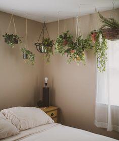 Hanging Plants in the Bedroom