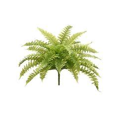 Boston fern bush, 23'' Boston Ferns, Green Plants, Artificial Plants, Houseplants, Decoration, Plant Leaves, Herbs, Amp, Products