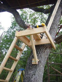 Image result for treehouse platform