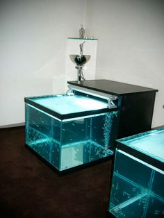 Fish Pedicure, Spa, Garra, Makeup Studio, Aquarium, France, Living Room, Goldfish Bowl, Aquarium Fish Tank