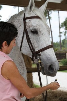 Home Remedies for Horses-use essential oils for skin fungus and anxiety!