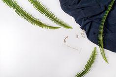 Knobbly - Aya Wind Photography