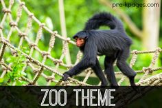 Zoo theme literacy and math activities for preschool and kindergarten.  Hands-on activities to make learning about animals fun!
