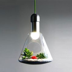 The Living Plant Pendant gives your plants the light and space they need to grow indoors.