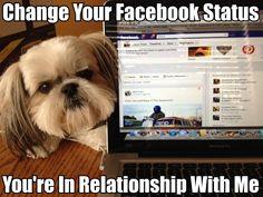 facebooking with dog hahahaha