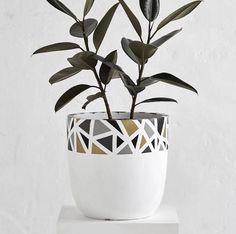 Αποτέλεσμα εικόνας για design twins pots