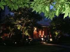 Professionally designed landscape lighting can be breathtaking when done well. Gardenalia develops personalized lighting solutions that showcase the nuances of your structures and outdoor spaces. Lighting Solutions, Landscape Lighting, Garden Landscaping, Outdoor Spaces, Inspiration, Design, Front Yard Landscaping, Outdoor Living Spaces, Biblical Inspiration