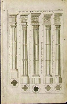 1765 Copper engraving showing Five Gothic Columns and their Plans.