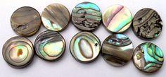 Iridescent Shell Coin Beads - Set Of 10 by CrashsCuriosities