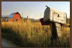 """Mailbox...Living twelve miles out into the country from the nearest village was all I knew growing up.  Having the mailman come was always a curiosity for me.  """" What's in the mail today ? ! """"  Or, """" Has the mailman come yet ? """"   There was rarely anything of real interest to a child or young person...so I don't know why the curiosity....:)"""