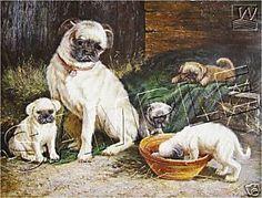 vintage pug poster   Vintage Victorian Pugs Mother Pups Canvas Dog Art Print   eBay