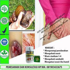 [licensed for non-commercial use only] / obat wasir yg berdarah Ciri, Herbalism, Coconut, Drinks, Amp, Moonlight, Liquor, Drink, Herbal Medicine