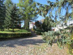 Pod koniec wojny, w roku 1945 Rosjanie zajęli Szestno. Nie zniszczyli budynków, ale ograbili dwór.  www.it.mragowo.pl