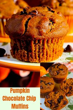 Moist, soft, and dotted with melty chocolate chips, these Pumpkin Chococolate Chip Muffins will be a fall staple after the first taste! #greedyeatsblog #pumpkinmuffins #easypumpkinmuffins #pumpkinchocolatechipmuffins #moistpumpkinchocolatechipmuffins #thanksgivingbreakfasts #easypumpkinchocolatechipmuffins #fallbreakfasts #falldesserts #pumpkinrecipes #holidaybreakfasts #pumpkinbreakfastrecipes #fallmuffins #holidayrecipes