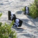 Pirate treasure hunt -lots of great ideas