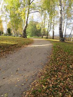 Hietasaari Vaasa My Heritage, Homeland, Denmark, Norway, Sweden, Country Roads, Autumn, Pictures, House