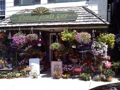 Floral Window Displays for Shops | The BEAUTIFUL Hinsdale Flower Shop