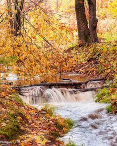 A little waterfall on Scott Creek near AuTrain, MI Michigan Waterfalls, Framed Art Prints, Fine Art Prints, Waterfall Photo, State Of Michigan, Upper Peninsula, Canvas Frame, The Good Place, Amazing Places