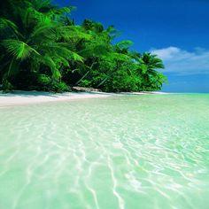 Tropical Paradise #tropical #beach #paradise