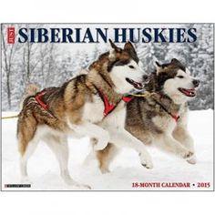 Just Siberian Huskies 2015 Calendar $11.99
