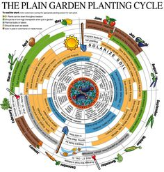 This is zone 8, not 9, but I like the concept. Makes me feel like I can jump in at any time and be productive, no matter what month I begin.