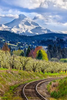 Mount Hood from Pine Grove, Oregon //by GeorgeOfTheGorge; I have climbed it! Places To Travel, Places To See, Beautiful World, Beautiful Places, Amazing Places, Oregon Usa, Oregon Travel, By Train, Train Tracks