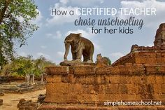 Unschooling basically questions why we do school the way we do. And then it goes a step further and questions homeschooling, too.