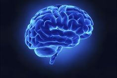 Brain wiring affects how people perform specific tasks