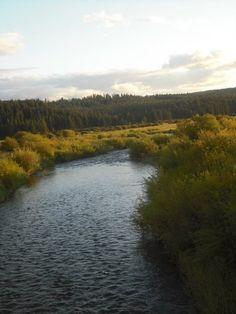 Camas Creek;Ukiah, Oregon
