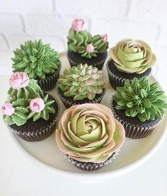 succulent cupcakes