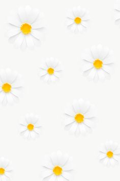 Download free png of White daisy pattern transparent png by nam about daisy, daisy flower, daisy png, paper flower, and png 2025423