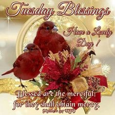 Tuesday Blessings!