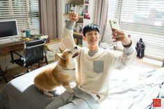 Handsome Korean Actors, While You Were Sleeping, Korean Drama, Korean Idols, Kdrama, Kpop, Animals, Goblin, Wallpaper