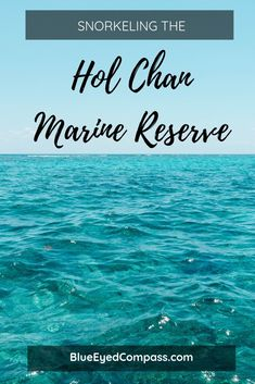 Snorkeling the Hol Chan Marine Reserve – Blue Eyed Compass