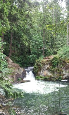 Trailside waterfall and swimming @ Whatcom Falls, Bellingham, Washington on ramblr.com     http://www.ramblr.com/module/trip/mymap_viewer.php?user_id=SummerRamblr