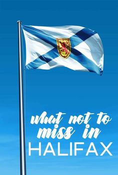 A look at what not to miss in Halifax, Nova Scotia. Discover the best spots to eat, fun things to do and see and make the most of your trip! East Coast Cruises, Ontario, New England Cruises, Canada Cruise, Discover Canada, Canada Destinations, Canadian Travel, Atlantic Canada, Cruise Travel