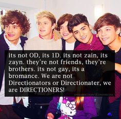 I'm a directioner for life!!!