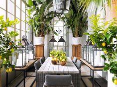 Bringing the greenery in--repin via Corinne Kowal #greenroom