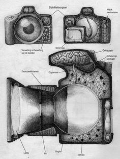 Anatomía de una cámara Por Redmer Hoekstra