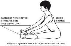 Жесткие подколенные сухожилия - ловушка для спины.
