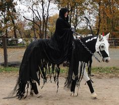 Horse Halloween fancy dress
