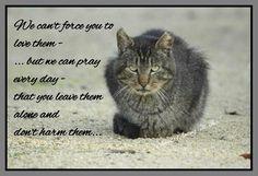 And pray everyday